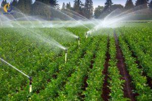 آب الکترولیز شده در صنعت کشاورزی