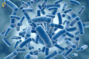 آلودگی میکروبی آب شرب